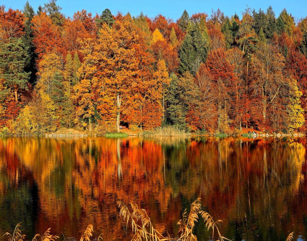 När hösten blir till njutning